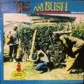 THE AMBUSH . VARIOUS