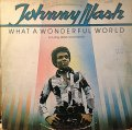 JOHNNY NASH / WHAT A WONDERFUL WORLD