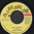 JOSEY WALES / BUSH WACKED