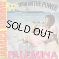 PALEMINA / TURN ON THE POWER