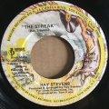 RAY STEVENS / THE STREAK . YOU'VE GOT THE MUSIC INSIDE