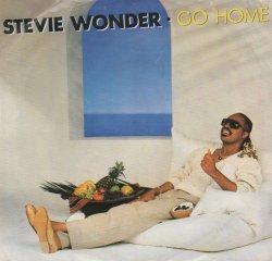画像1: STEVIE WONDER / GO HOME